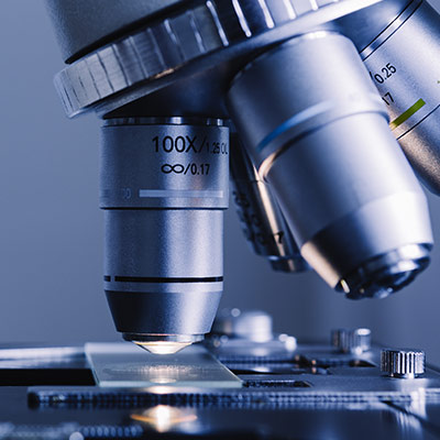 A link to a page further explaining the life sciences markets we serve